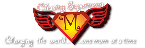 Chasing Supermom Reflection and Survey