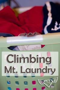 Climbing-Mt-Laundry