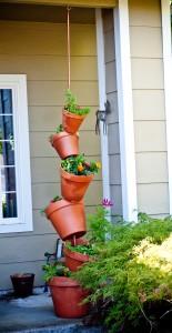 pots (2 of 4)