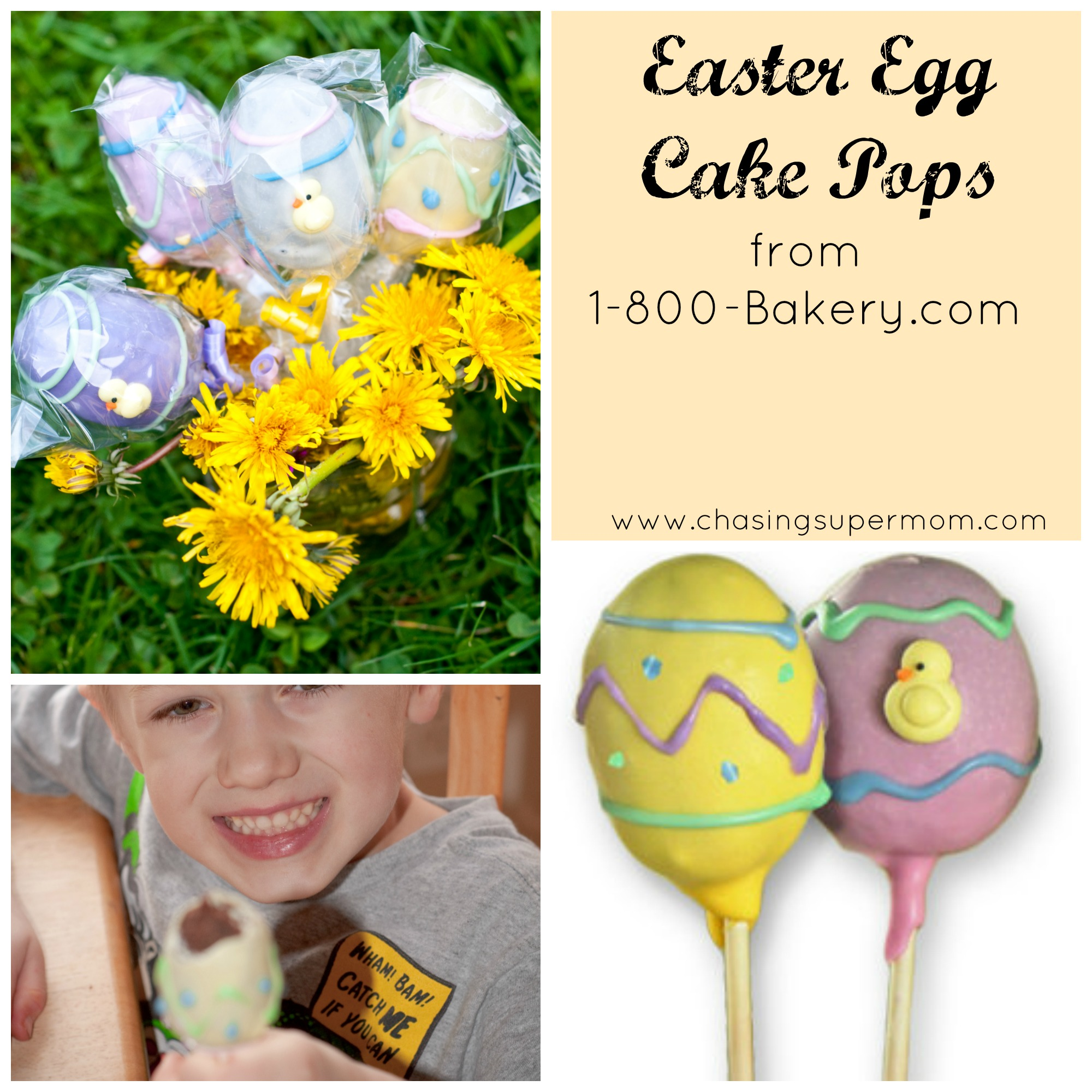 Easter Egg Cake Pops from 1-800-Bakery.com – Review