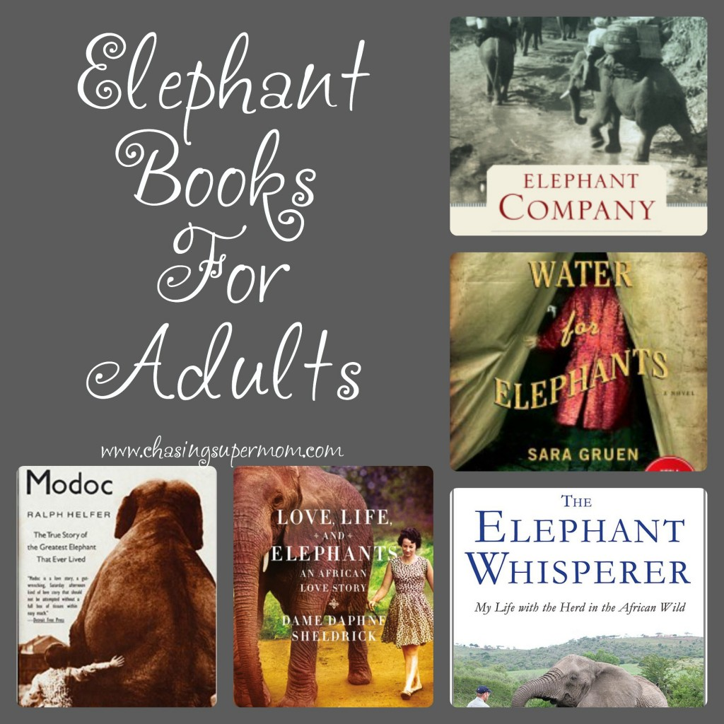 Elephant Books for Adults