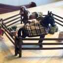 Schleich's Horse Club