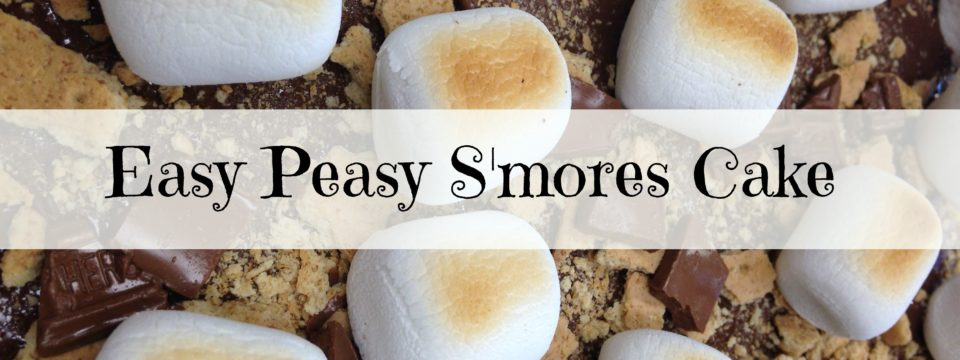 Easy-Peasy S'mores Cake