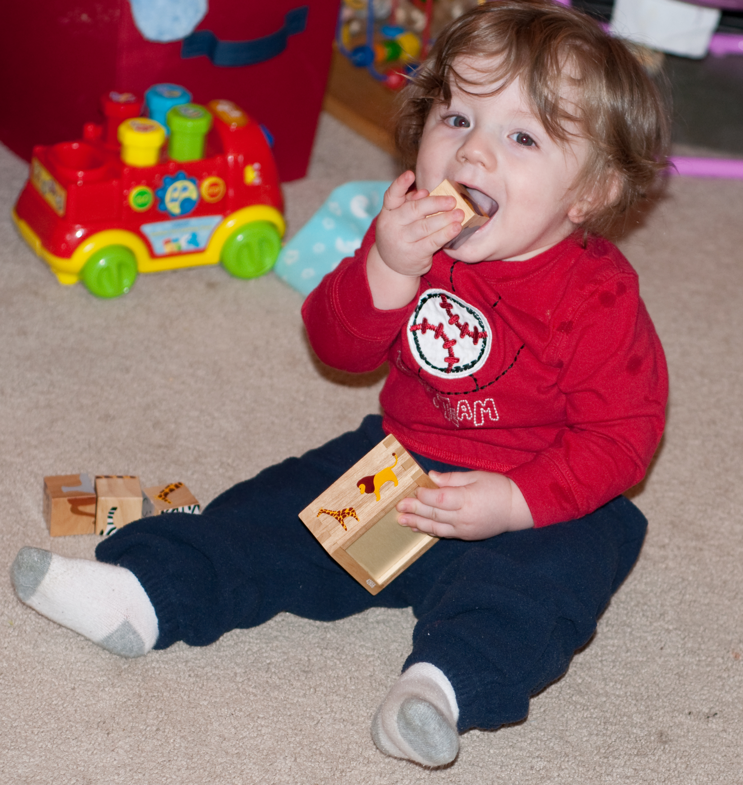 Buddy Blocks from Timberdoodle Review